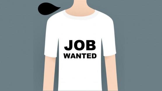 emploi-job-wanted-lentreprise_5501613